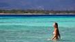 A beautiful woman walking on a vacant beach