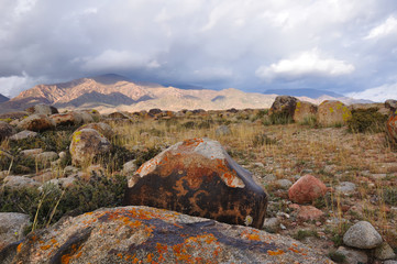 Stones with petroglyph in mountains of Kyrgyzstan