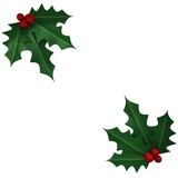 Two mistletoes in white background - 3d image