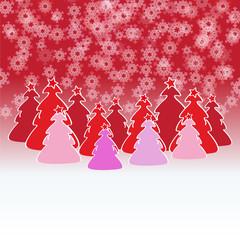 bosque de abetos navideños