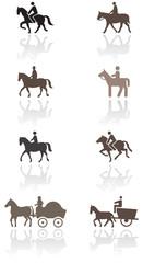 Horse or pony symbol vector illustration set.