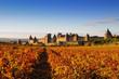 canvas print picture - La cité de carcassonne