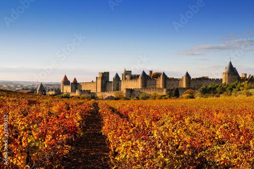 canvas print picture La cité de carcassonne