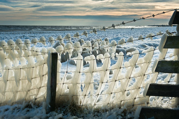 fence covered in ice