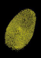 Impronta vettoriale