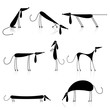 Funny black dogs silhouette, collection for your design