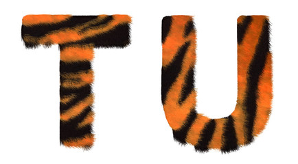 Tiger fell T and U letters isolated