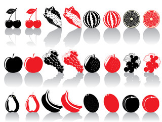 Abstract fruit collection vector