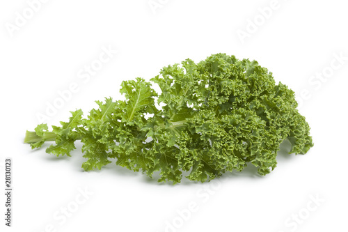 Single fresh green kale leaf at white background