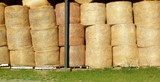 round wheat bales stacked stock rows golden