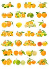 colección de frutas cítricas