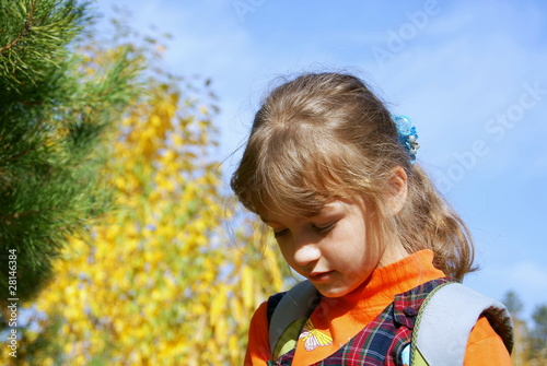 The girl in the autumn in park