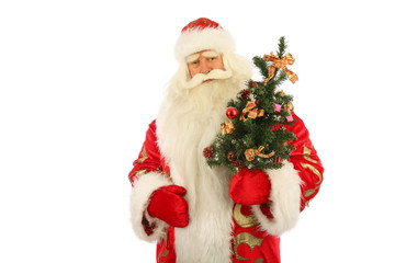 Santa Claus holding  christmas tree