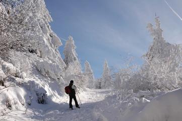 montée au Puy de Dôme