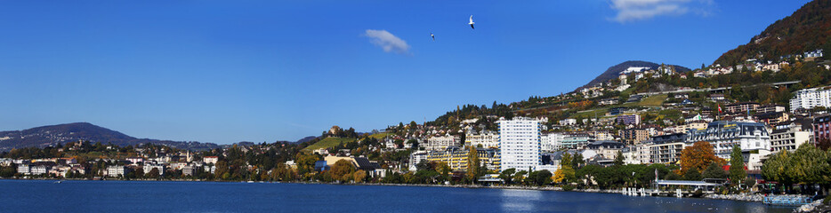 Panoramic view on the coast of Montreux