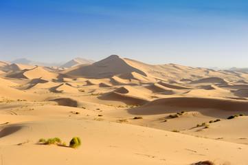 desert dune silhouette background
