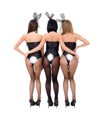 Sexy playgirls wearing a bunny costumes