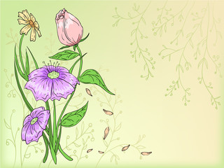 Vector flowers hand draw with background