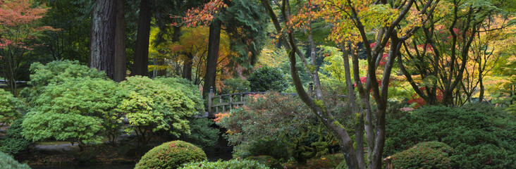 Wooden bridge, Japanese Garden