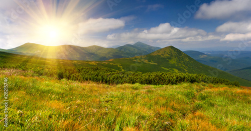Colorful summer landscape in the Carpathian