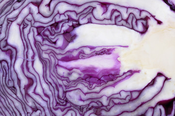detail of a sliced red cabbage