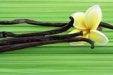 gousses de vanille Bourbon sur feuille de palmier