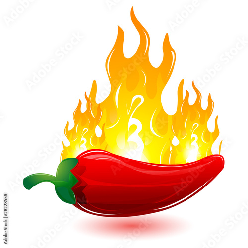 red chilli with fire - 28228559