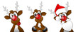 Rudolph collection 3