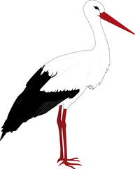 Stehender Storch outline