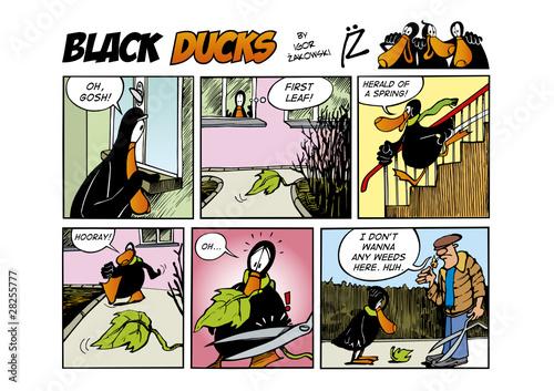 Black Ducks Comic Strip episode 61