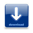 Button Download blau