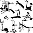 gym equipment - vector