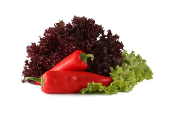 red pepper leaves of green and burgundy lettuce
