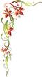 Ranke, flora, filigran, Blumen, Blüten, rot, orange, grün