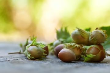 hazelnuts on wooden desk