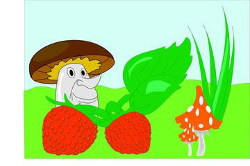 mushroom strawberry leaves grass meadow