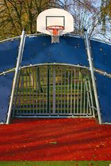 Soccer Goal and Basket Ring