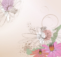 Floral background with Lotos