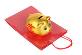 Piggy bank and shopping bag