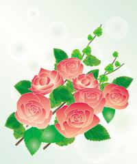 バラの花束Ⅰ