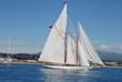 Classic Yacht race