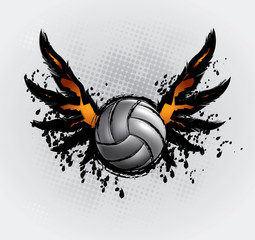 Volleyball Ball Set 6
