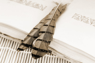 Antique book and feathers