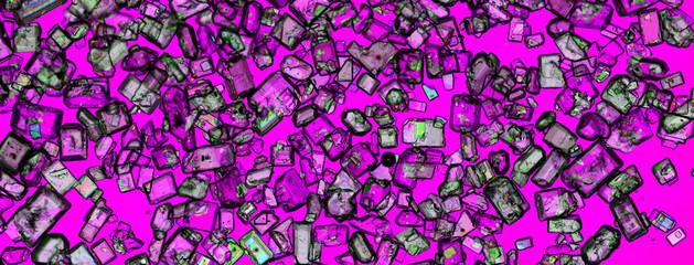 Zuckerkristalle im polarisierten Licht
