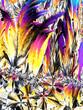 Kristalle im polarisierten Licht