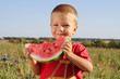 Smiling little boy eating watermelon on field