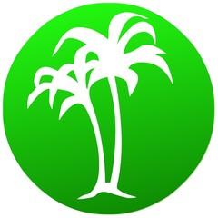 umwelt   icon . natur grün palmen