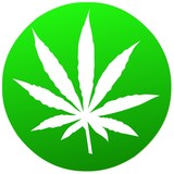 Cannabis  Button