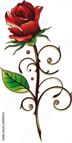 rose rosen ranke rot blumen bl ten bl tter stockfotos und lizenzfreie vektoren auf. Black Bedroom Furniture Sets. Home Design Ideas
