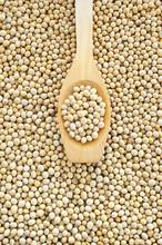 Kopyść i suszone nasiona soi